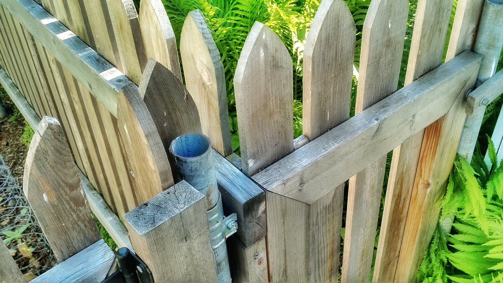 Backyard Front Yard Transforming Your Chainlink Fence