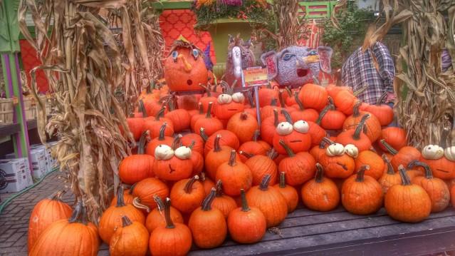 Edgewater Glen Halloween